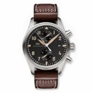 Replica IWC Pilot's Watch Chronograph Collectors Watch Edition IW387808